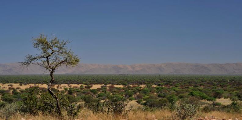Gamagara4